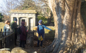 Group of people looking at the base of a Burns sycamore